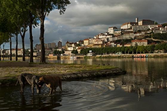 Coimbra vista do Parque Verde, na margem esquerda do Mondego: declarada patrimônio em 2013
