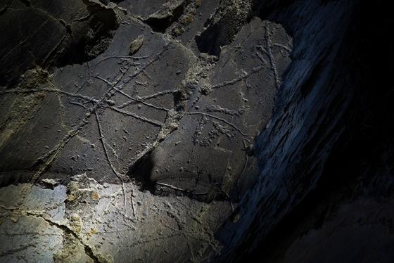 Detalhe da Rocha 5B no sítio arqueológico de Penascosa, Vale do Côa: visita noturna é inesquecível