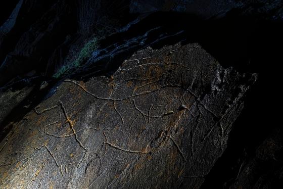 Rocha 6, na qual estão gravados dois cavalos e dois machos de cabra-montês