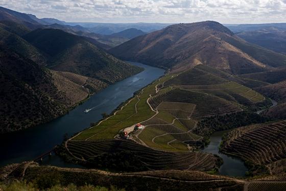 Vista sobre o Douro proporcionada pela Quinta de Castelo Melhor: uma paisagem deslumbrante