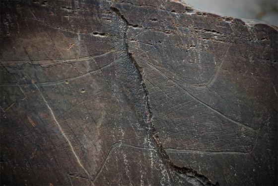 O auroque da rocha 2, mais famosa pela pela figura humana da qual não tenho uma só foto publicável