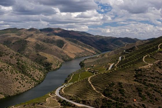 A paisagem do Douro desde o Museu do Côa: provavelmente a mais bela região vinícola do mundo