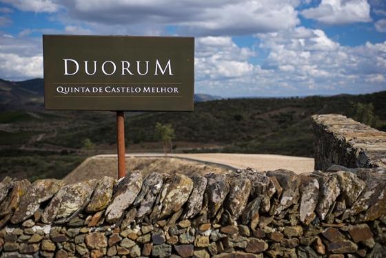 Entrada da Quinta de Castelo Melhor:bem perto da vila que lhe empresta o nome