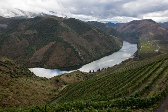 O Douro visto do alto da encosta: vinhas entre 160 m e 400 m de altitude