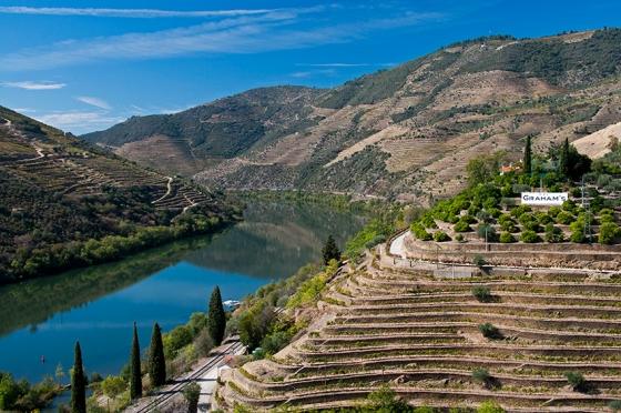 Quinta dos Malvedos: produtora de vinhos de porto que são verdadeiras obras de arte