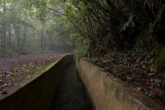 Levada do Furado, um dos muitos canais de irrigação da ilha transformados em percursos pedonais