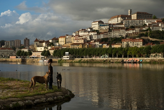 O Mondego e Coimbra vistos do Parque Verde, na margem direita do rio